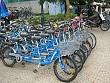 Cho thuê xe đạp tại đảo Cô Tô