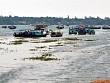 Huyện Đảo Cô Tô Đẩy Mạnh Phát Triển Nghề Cá