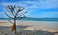 Bãi biển Vàn Chảy Cô Tô – đẹp muốn rụng tim